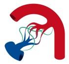 VASCERN logo