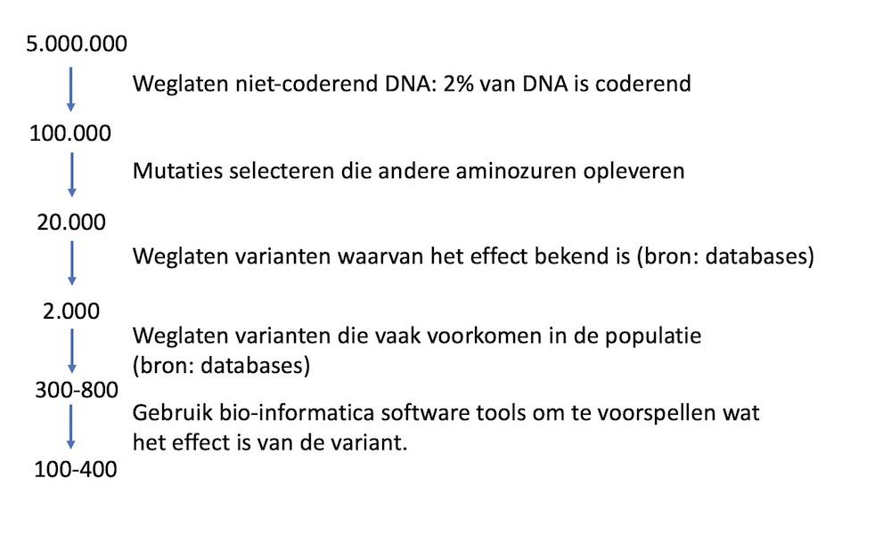 eliminatie-varianten-nl